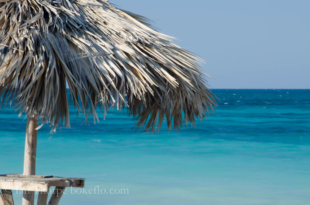 Tropical View of a palm umbrella and the sea from Varadero Beach, Cuba